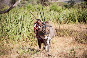 Manyatta-Hunting-8